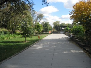 One of the wide walkways at the zoo.  This view faces the River Hippos