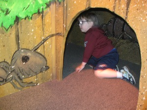 At the left of the photo, there is a painting of an ant getting ready to crawl into a tunnel; at the right, there is a U-shaped tunnel with a little boy sitting in it.  The little boy is about the same size as the ant.