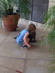 Sprout pets the resident cat in the orangery.