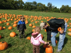 Peanut, Sprout, and Efrit pick out our pumpkins.